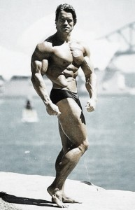 Arnold Says: &quot;Stop Copying My Programs!&quot;